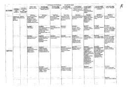 delibera giunta 41 del 2017ICO